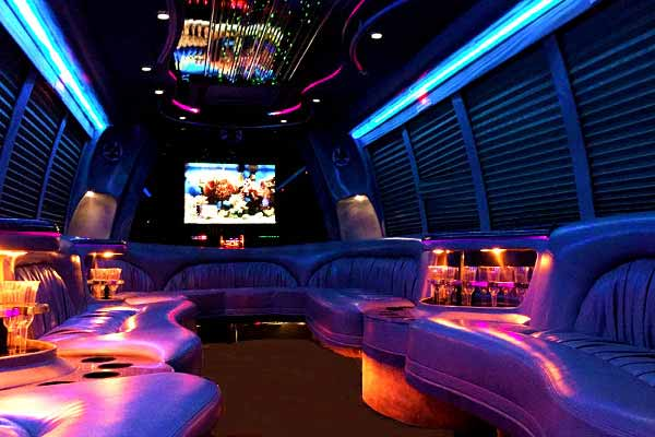 18 passenger party bus rental Benson
