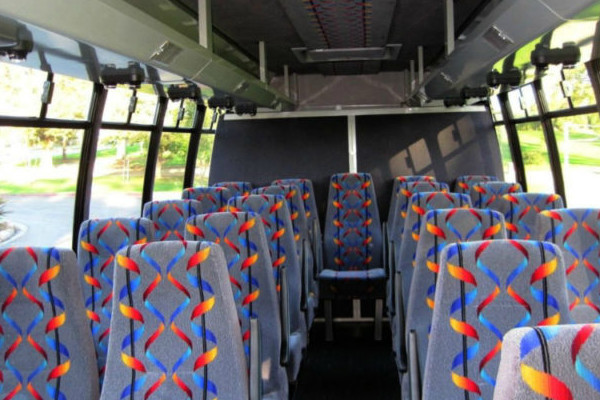 20 person mini bus rental Benson