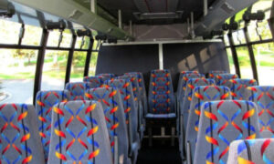 20 person mini bus rental Tanque Verde