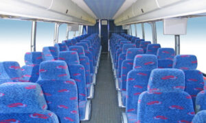 50 person charter bus rental Three Points